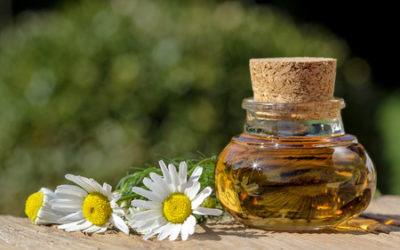 Tamanuöl – das kleine Wunder